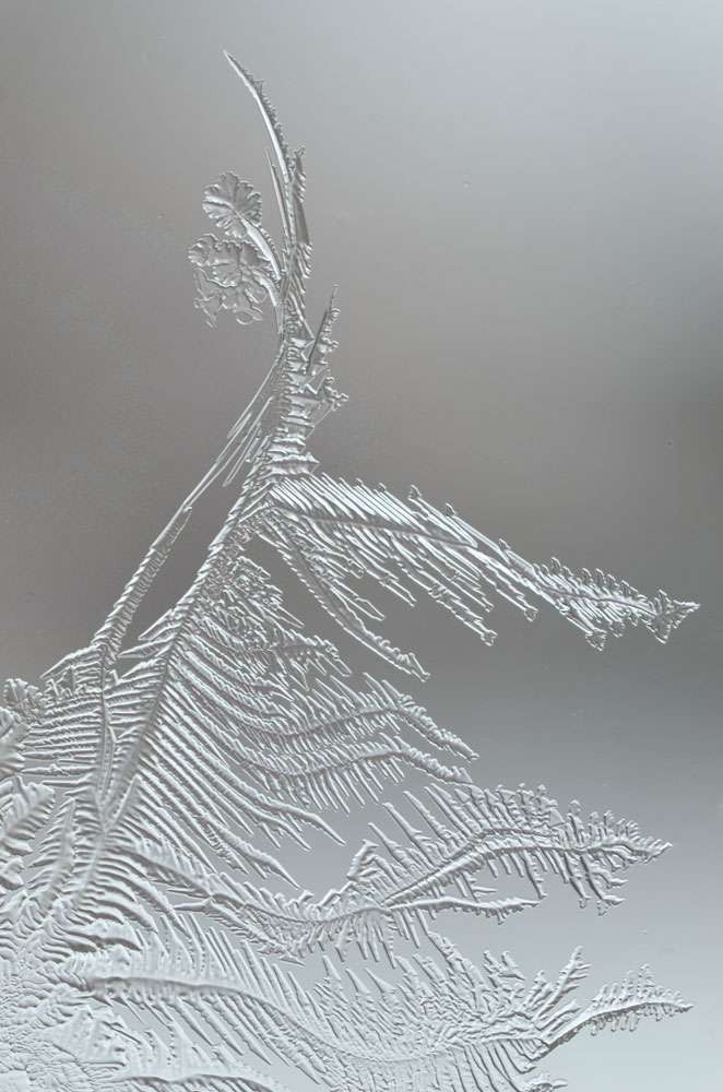 WindowFrostDetails5