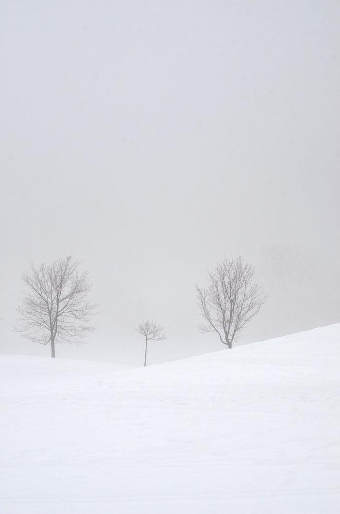 WinterFog11