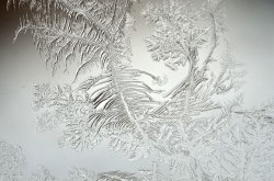 WindowFrost_Crystals10