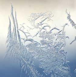 WindowFrost_Crystals5