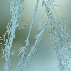 WindowFrost_Crystals6