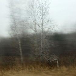 The-Bones-of-Autumn5