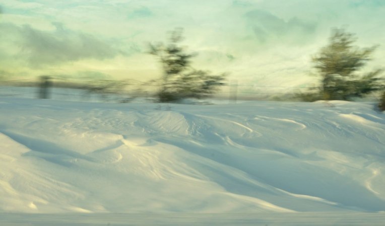 Snowbank-and-Trees