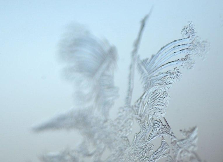 Ice-Fractal1