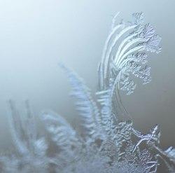 Ice-Fractal9