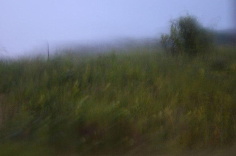 The-Hush-of-Rain-3
