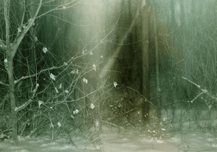 WinterNight1