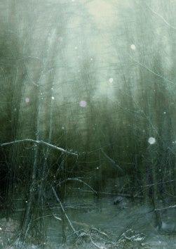 WinterNight2