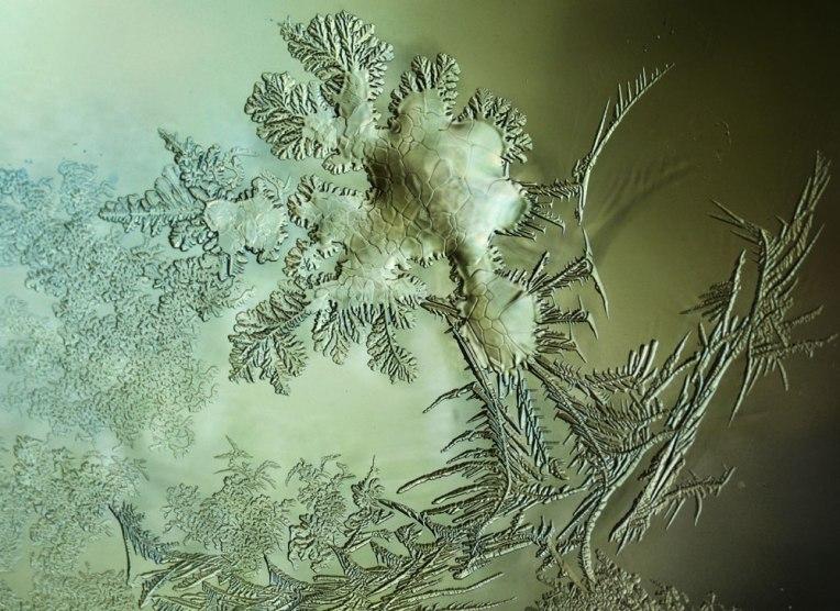 WinterWater_frost1