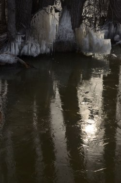 RiverIce_Sculpture10