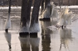 RiverIce_Sculpture11