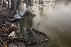RiverIce_Sculpture6