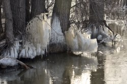 RiverIce_Sculpture7
