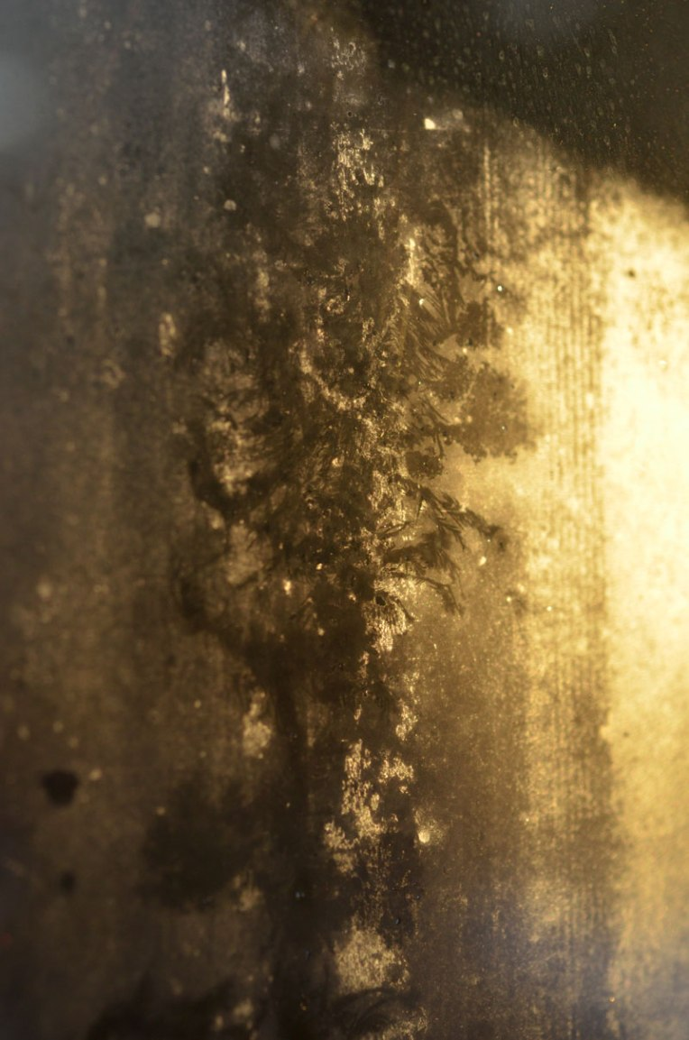 traces_windowfrost4